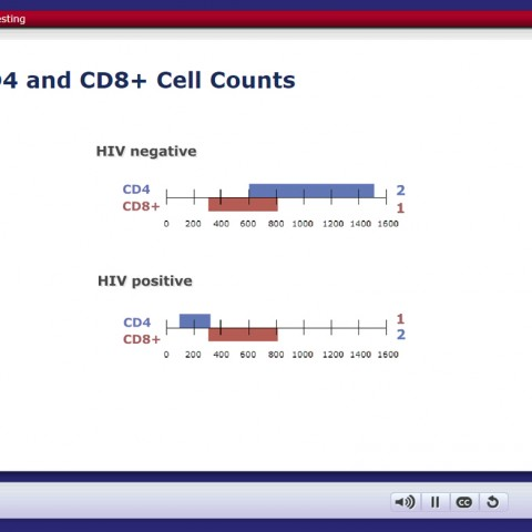 CD4 and CD8+ Cell Counts